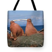 Fighting Walrus Tote Bag