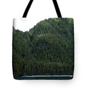 Figure That Tote Bag