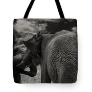 Fiighting Elephants Tote Bag