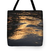 Film Noir Cinematographer John F. Seitz Gloria Swanson Sunset Blvd 1950 Casa Grande Arizona 2004 Tote Bag