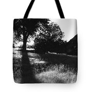 Film Noir Joseph Cotton Alfred Hitchcock Shadow Of A Doubt 1943 Ghost Town Mowry Arizona 1968-2008 Tote Bag