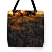 Filtered Tote Bag