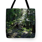 Filtered Sunlight Peace Tote Bag
