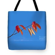 Final Fling Tote Bag