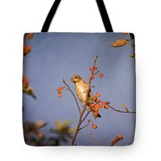 Finch In A Cherry Tree Tote Bag