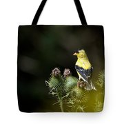 Finch In The Thistles Tote Bag