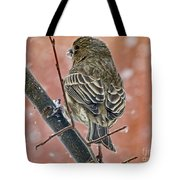 Finch On A Snowy Day Tote Bag