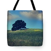 Find It In The Simple Things Tote Bag by Laurie Search