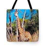 Find The Giraffe Tote Bag