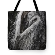 Finding Love Tote Bag by Joan Carroll