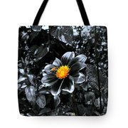 Finding The Pot Of Gold Tote Bag