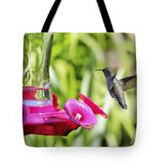 Fine Feathered Hummingbird Tote Bag