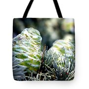 Fir Cone Tote Bag