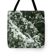 Fir Tree Branch Covered With Snow  Tote Bag