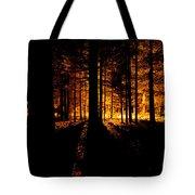 Fir Trees Back Lit  Tote Bag