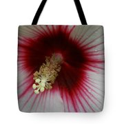 Fire After The Rain Tote Bag