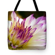 Fire And Ice - Dahlia Tote Bag