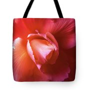 Fire And Ice Floral Begonia Tote Bag