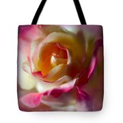 Fire And Ice Rose In Square Format Tote Bag