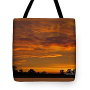 Fire In The Sky Tote Bag by Ann Horn