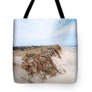 Fire Island Landscape Tote Bag