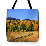 Fire On The Mountain Tote Bag by Dana Kern