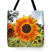 Fire Petals Tote Bag