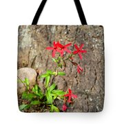 Fire Pinks Tote Bag