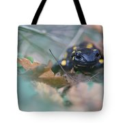 Fire Salamander Front View Tote Bag