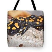 Fire Salamander Salamandra Salamandra Tote Bag
