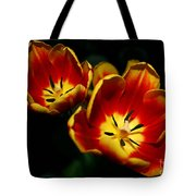 Fire Tulip Flowers Tote Bag