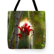 Firecracker Cacti Tote Bag