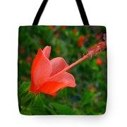Firecraker Hibiscus Flower Tote Bag