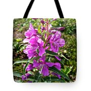 Fireweed In Katmai National Preserve-ak- Tote Bag