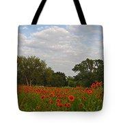 Firewheel Field Tote Bag