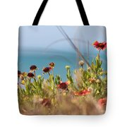 Firewheels By The Sea Tote Bag