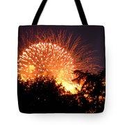 Fireworks 2014  5 Tote Bag