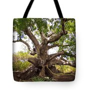 Firmly Grounded Tote Bag