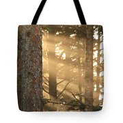 Firs On Fire Tote Bag