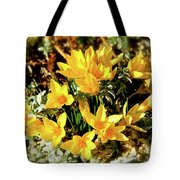 First Crocus Serenade Tote Bag