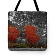 First Fall Color In Red Tote Bag