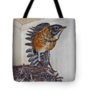 First Flight Preparations Tote Bag