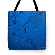 First Frost-3 Tote Bag