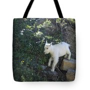 First Ledge Leap Tote Bag