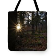 First Light Of Morning Tote Bag