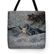 First Look Tote Bag