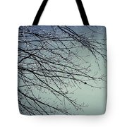 First Of Winter Tote Bag