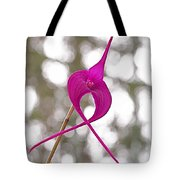 First Prize Tote Bag by Rona Black