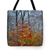 First Snow 2 Tote Bag