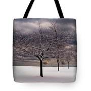 First Snow 2010 Tote Bag